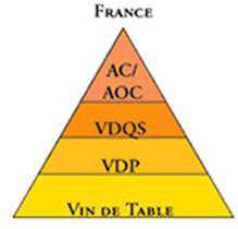 french wines regions and types