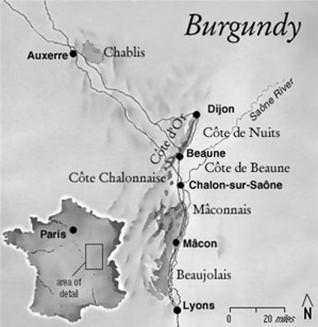 french wines region Burgundy