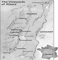 french wines region Alsace